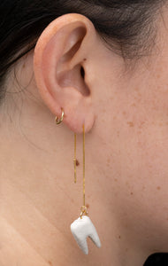 Tiny Tooth Earrings with 14k Gold Hooks