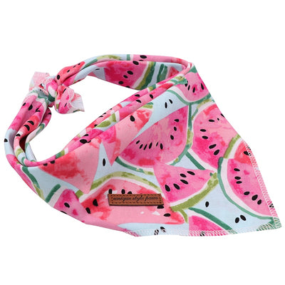Watermelon & Flamingo Bandana Set 2/pk