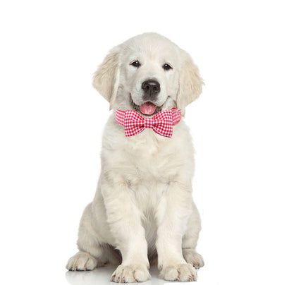 Red Gingham DOG COLLAR|BOWTIE