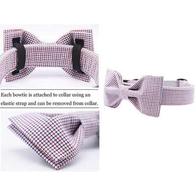 The Professional DOG COLLAR|BOWTIE