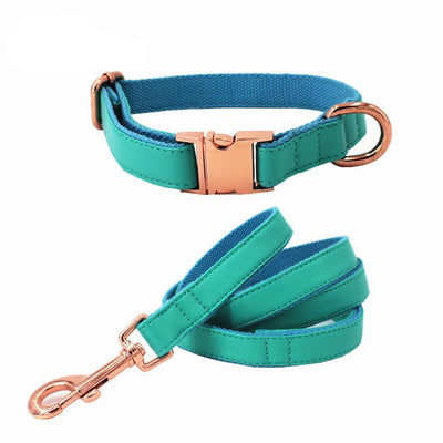Faux Leather Teal Dog Collar & Leash