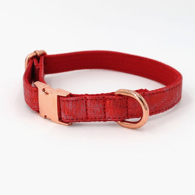 Faux Leather Red Dog Collar & Leash
