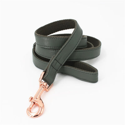 Faux Leather Dark Green Dog Collar & Leash
