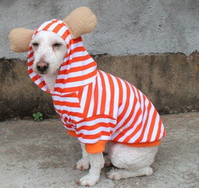 Orange Stripe Hoodie with Ears Clothing