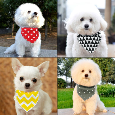 Fashion Furever Bandana Set 4/pk