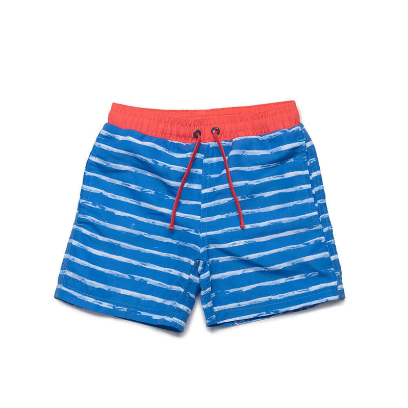 Blue Stripe Tristan Swim Trunks