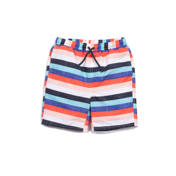 Stripe Print Drake Swim Trunk