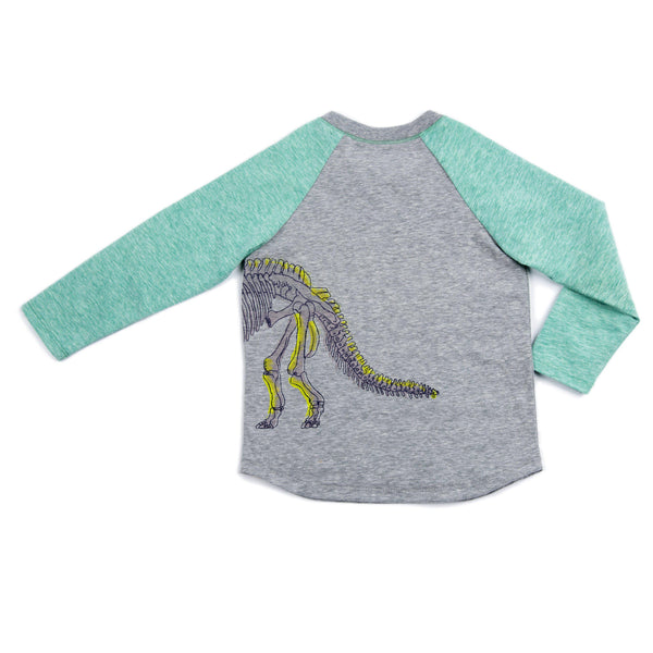 Dinosaur Asher Top