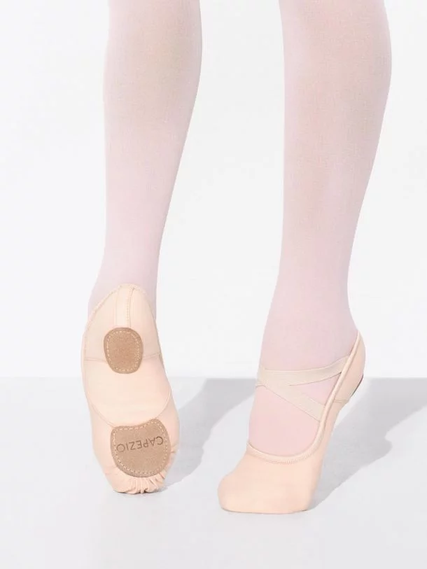 Capezio - Hanami Ballet - Stretch Canvas