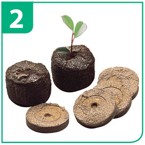 Seed Sowing Guide For Jiffy Pellets - Step 2