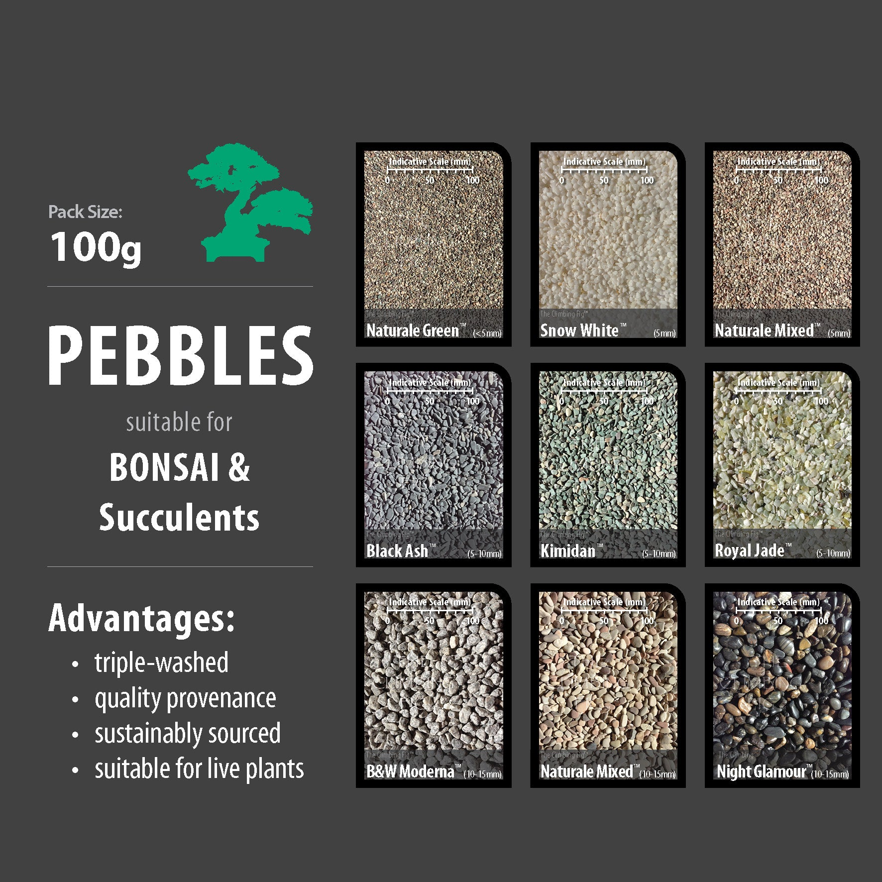100g Decorative Pebbles for Bonsai, Succulents & Terrariums. Washed large range