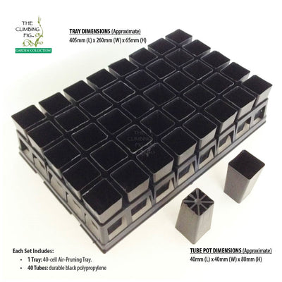 40-Cell Air Pruning Tray with 40mm Square Black Plastic Tube Pots