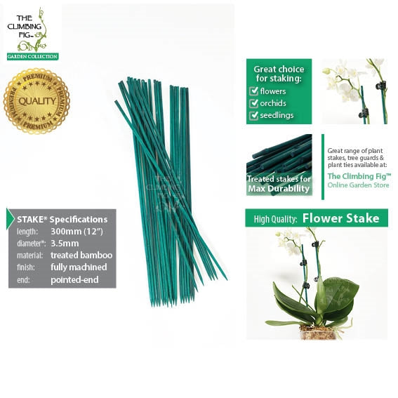 "30cm (12"") Bamboo Flower Stakes GREEN 3.5mm Thick. Machined for flowers orchids"