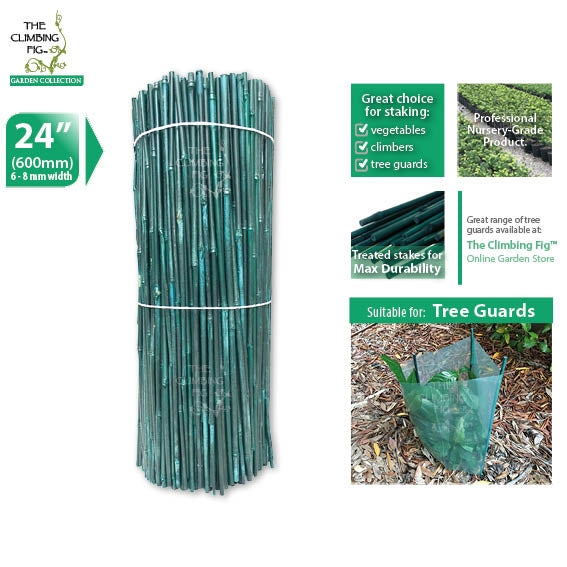 "60cm (24"") Bamboo Stakes (Green, 6-8mm Thick)"