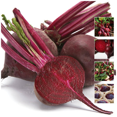 Beetroot Giant Victorian Seeds