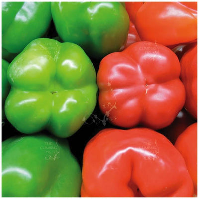 Capsicum Bell Red On Green Seeds