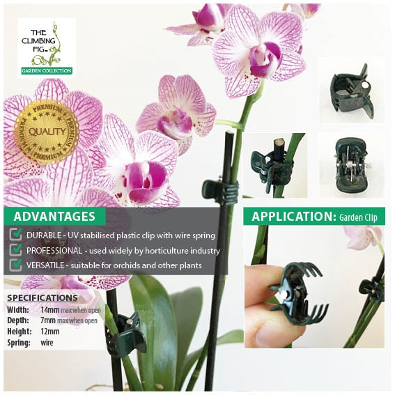 Small Orchid Plant Clips in Dark Green Plastic