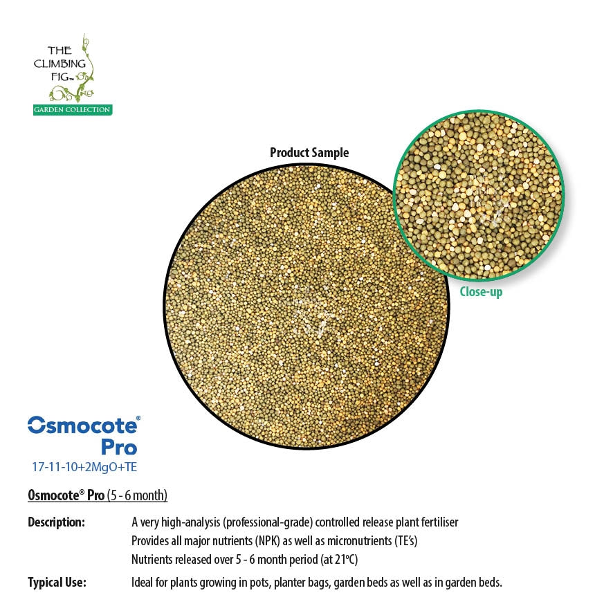Osmocote Pro 5-6 Month Controlled Slow Release High-Analysis Fertiliser