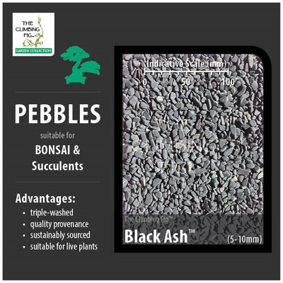 Black Ash 5-10mm Pebbles