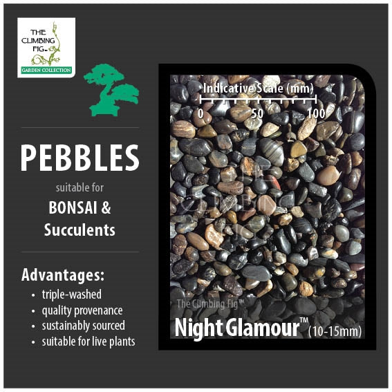 Night Glamour 10-15mm Decorative Pebbles. For Bonsai, Succulents & Terrariums