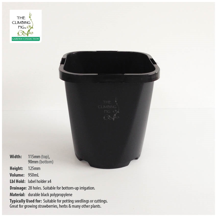 115mm Square-Round BLACK Plastic Pots. Ideal for potting seedlings & herb plants