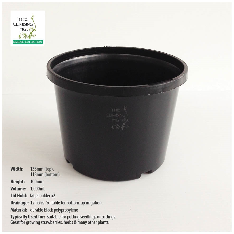 140mm Squat BLACK Plastic Pots. For potting seedlings, garden plants & shrubs