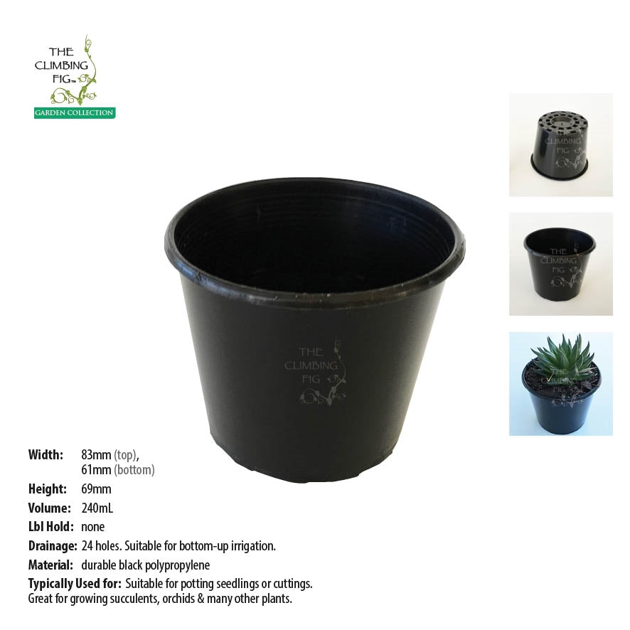 80mm Squat BLACK Plastic Pots. For potting succulents, orchids & seedling plants