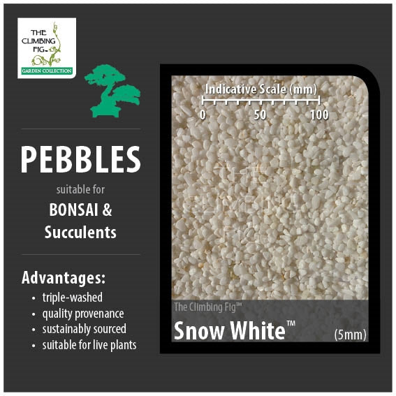 Snow White 5mm Pebbles. Washed range for Bonsai, Succulents & Terrariums