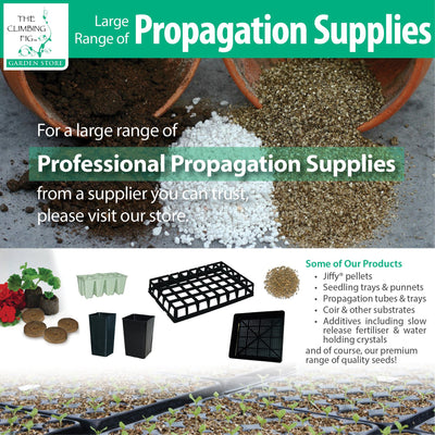The Climbing Fig Propagation Supplies Range