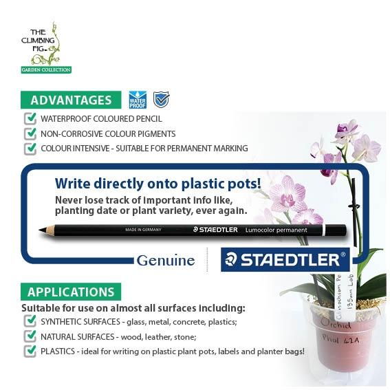 Staedtler Lumocolor Permanent BLACK Glasochrom Pencil. Write on plastic pots