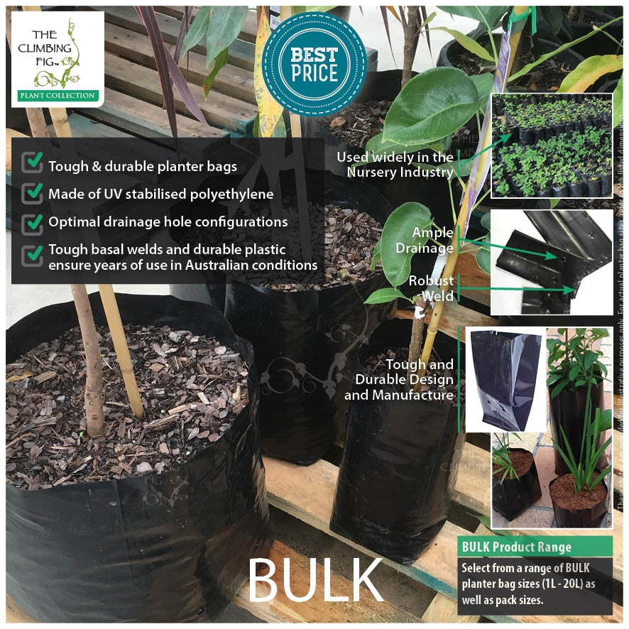 5 Litre NURSERY Poly Black Planter Bags. Grow plants, shrubs & trees. Bulk packs
