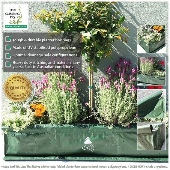 40 Litre Woven Planter Box Hedge Bags