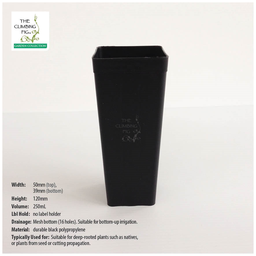 50mm Square Black Plastic Native Tube Pots