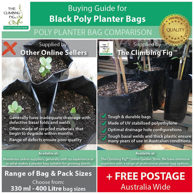 25 Litre PREMIUM Poly Black Planter Bags. Grow citrus, plants, shrubs & trees