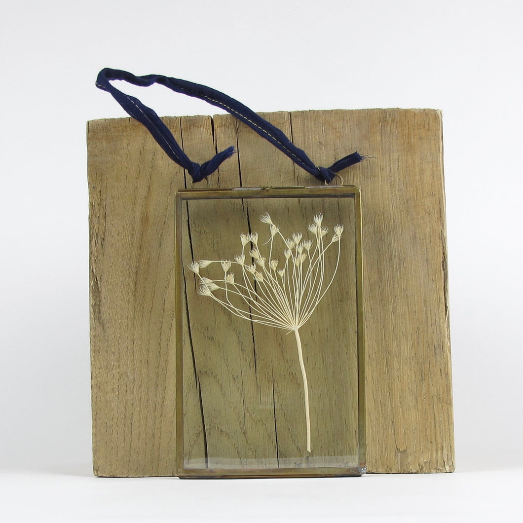 Kiko Umbels Antique Brass Frame