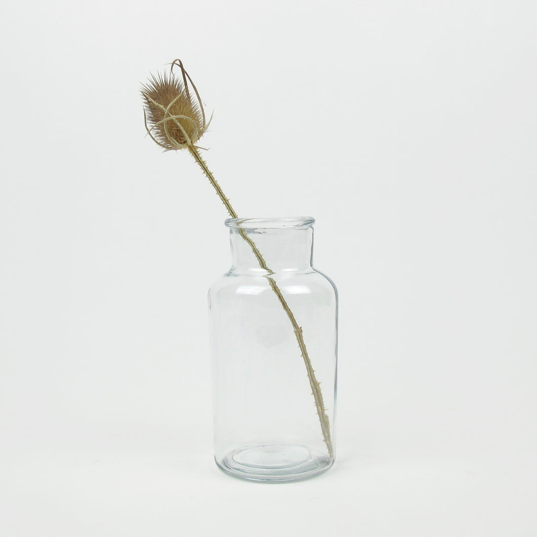 Clear small bell jar