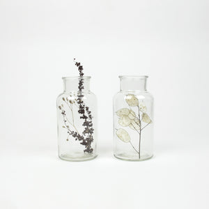 Duo dried flowers in vase No2