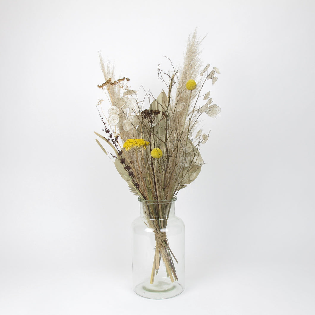 Achiella mixed dried in vase