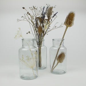 Teasels in glass