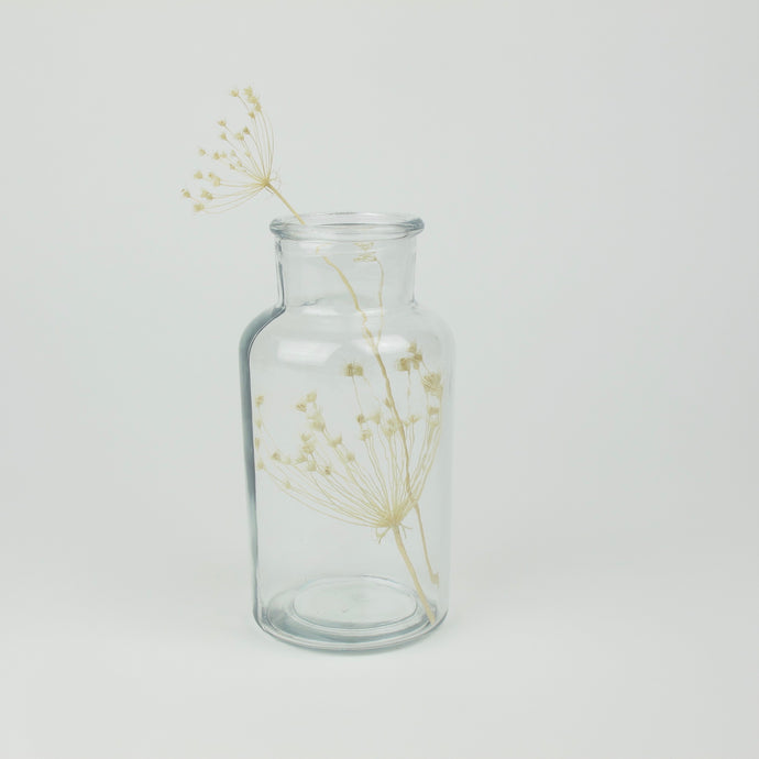Umbels in glass