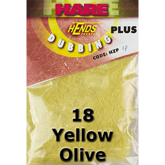 18 Yellow Olive