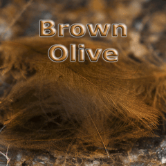 Chevron Hackles CDC  Brown Olive