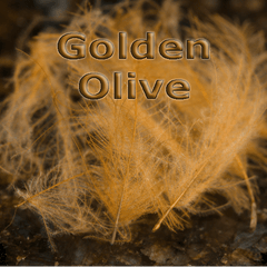Chevron Hackles CDC  Golden Olive