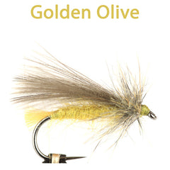 CDC Sedge, golden olive