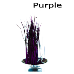 Semperfli Inferno Boar Bristles Purple
