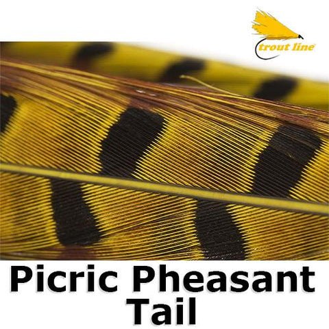 Troutline Picric Pheasant Tail Specially Selected