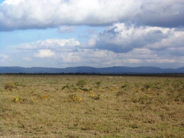 Shalom Gardens Phase 1 - Machakos County - Plot S51, Area(HA) 0.045 - OPTIVEN
