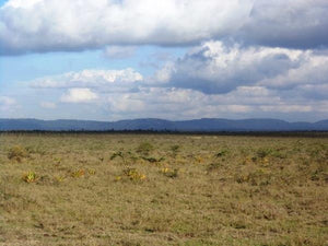 Shalom Gardens Phase 1 - Machakos County - Plot S82, Area(HA) 0.045 - OPTIVEN