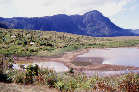 Stephen Williams – Writer of fiction. Levani Valley, Southern Highlands Province, PNG