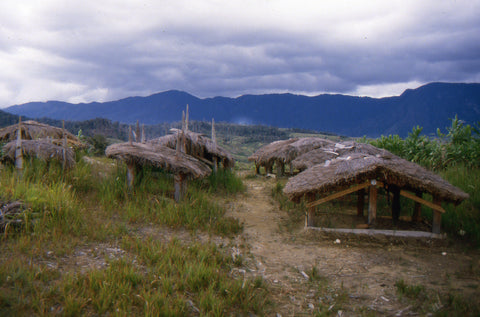 Stephen Williams – Writer of fiction. Graveyard, Levani Valley, Southern Highlands Province, PNG